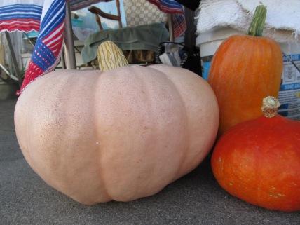 Mustn't forget the pumpkins