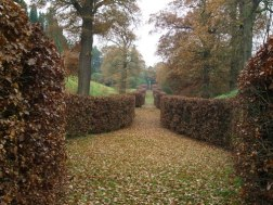 As are foggy mazes and hedges for gothic.
