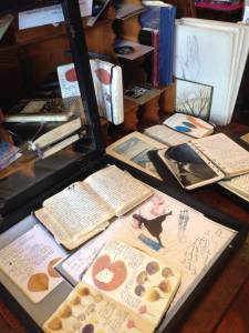 Susan Wooldridge's journal display at Magna Carta on 2nd st. In Chico for Artoberfest