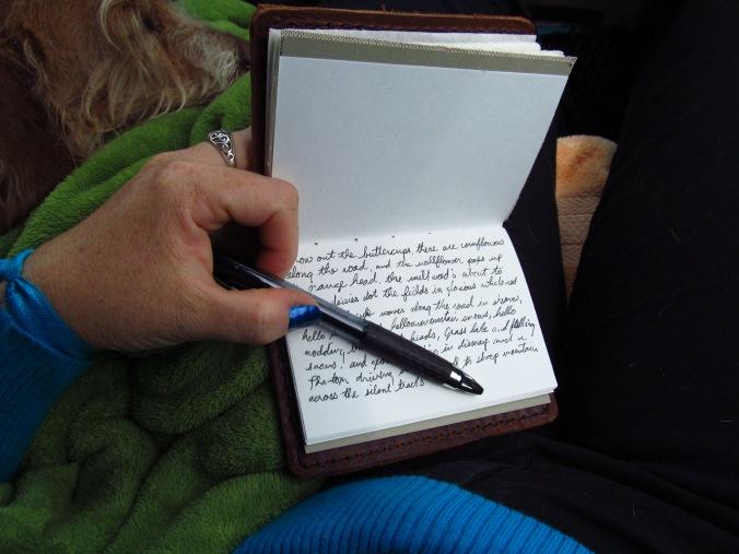 innovative journal writing