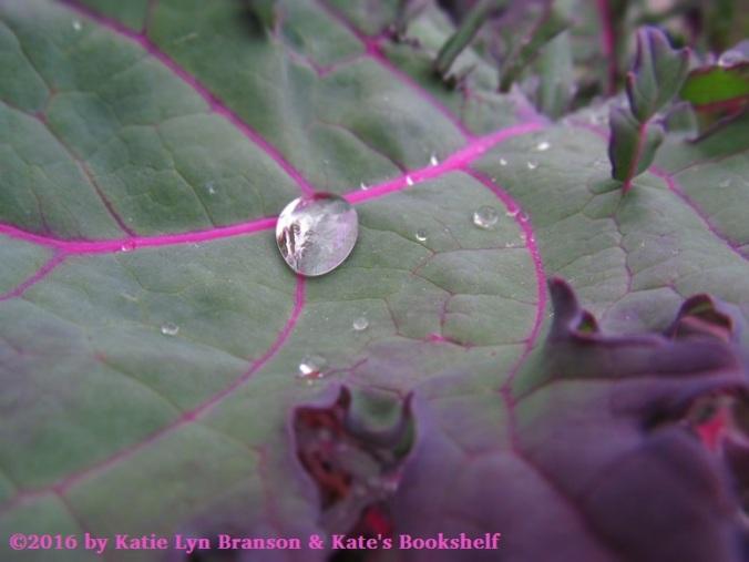 perfect-drop-kale